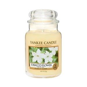 Vonná sviečka Yankee Candle Tabakový kvet, doba horenia 110 - 150 hodín