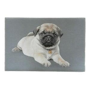 Predložka Mars&More Pug Pup, 75x50cm