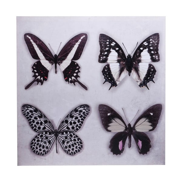 Obraz Ewax Black Butterflies, 60×60cm