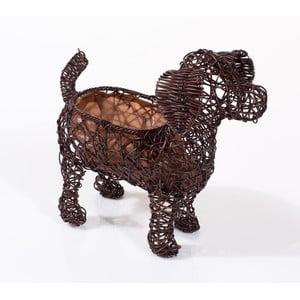Dekoratívny ratanový kvetináč Dog
