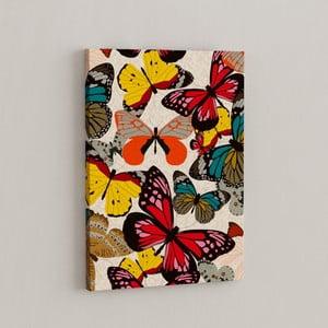 Obraz Let motýľov, 50x70 cm