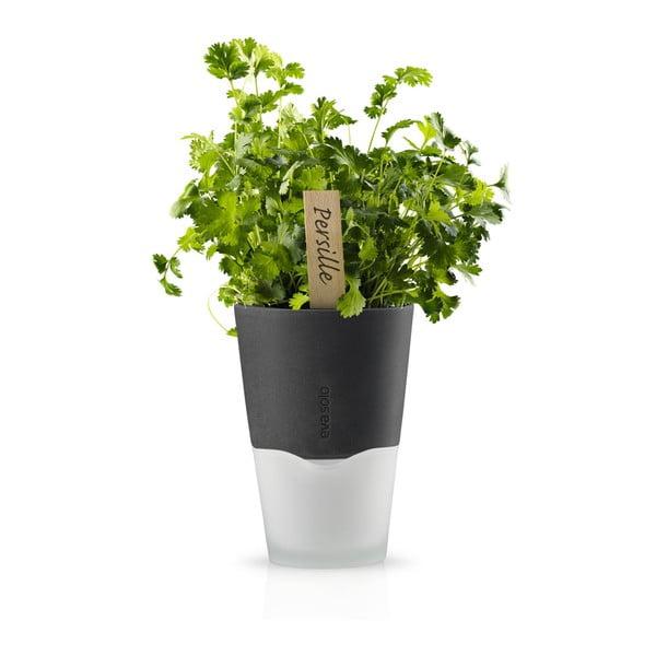 Samopodlievací kvetináč na bylinky Eva Solo Stone Grey, 11 cm
