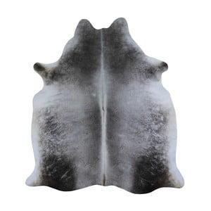 Sivý koberec z hovädzej kože, 230 x 155 cm