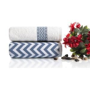 Sada 2 bavlnených modro-bielych uterákov Ladik Ella, 50 x 90 cm