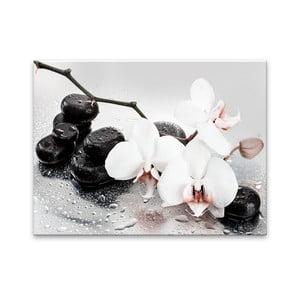Obraz Styler Pastel Orchids, 100 x 70 cm
