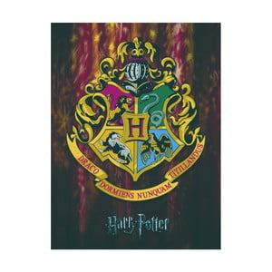 Obraz Pyramid International Harry Potter Hogwarts Crest, 60 × 80 cm