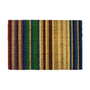 Rohožka Entryways Rainbow, 40×60 cm
