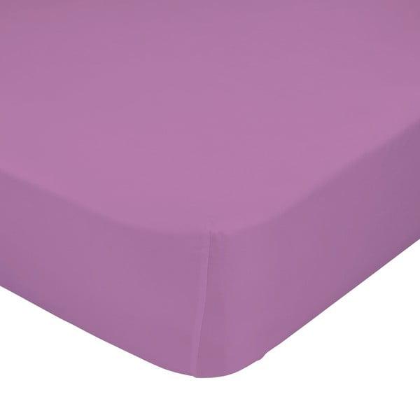 Fialové elastické prestieradlo Happynois, 70x140 cm