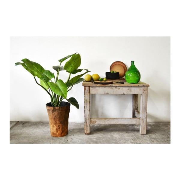 Palmový kvetináč Outside