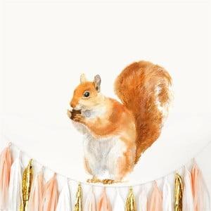 Nástenná znovu snímateľná samolepka Chocovenyl Squirrel