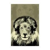 Fotoobraz Music Lion, 51x81 cm
