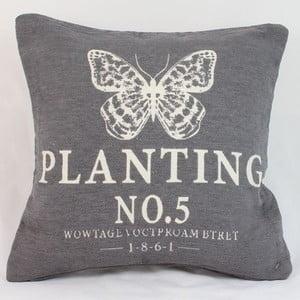 Obliečka na vankúš Planting 40x40 cm, tmavá