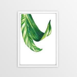Obraz Piacenza Art Bannana Leafy, 30 × 20 cm