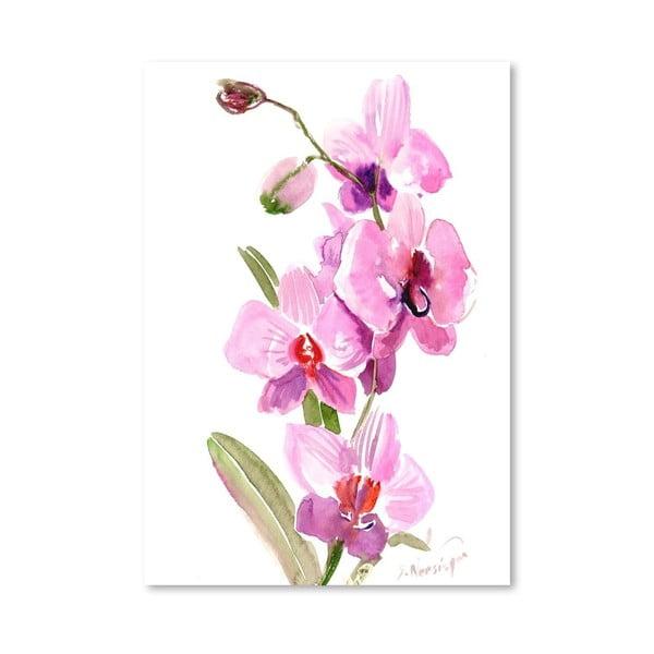Plagát Orchids Pink