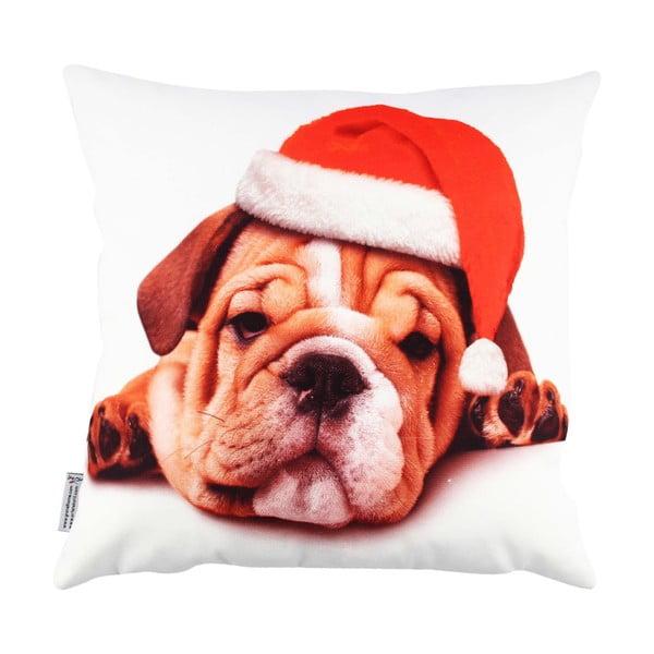 Vankúš so psíkom Christmas