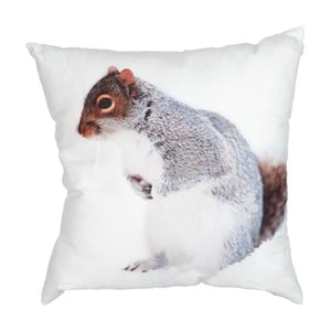 Vankúš Squirrel White, 45x45 cm