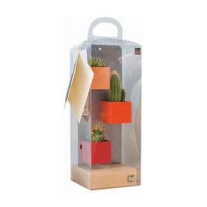 Sada 3 malých magnetických kvetináčov s podstavcom a rastlinkami, oranžová