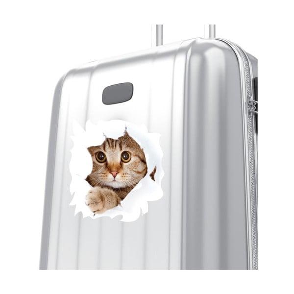 Samolepka Cat Wall