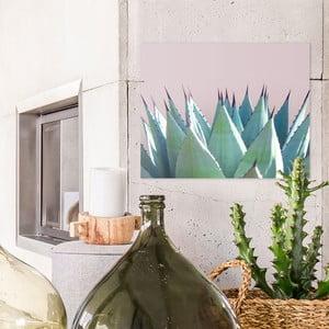 Sklenený obraz OrangeWallz Aloe, 40 x 50 cm