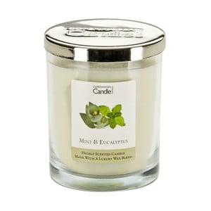 Aroma sviečka  Mint & Eucalyptus, doba horenia 40 hodín