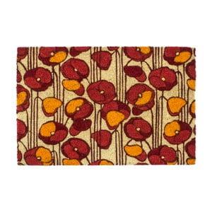 Rohožka Entryways Poppies, 40×60cm