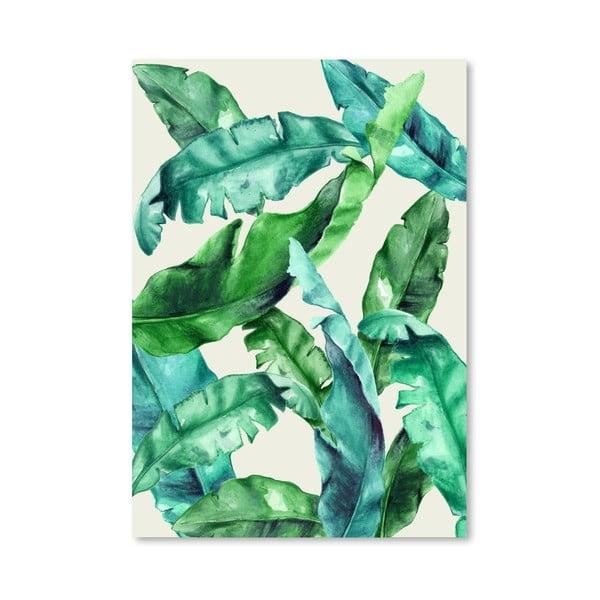 Plagát Tropical 1