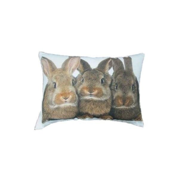 Vankúš Three Brown Rabbits 50x35 cm