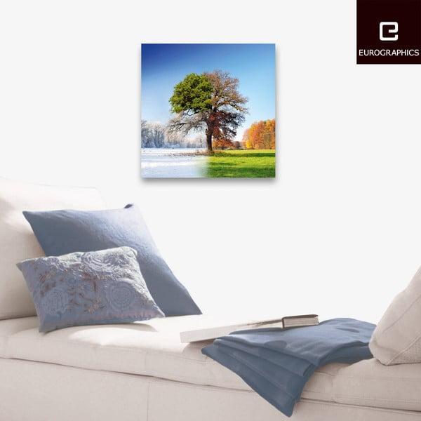 Sklenený obraz 4 Seasons, 50x50 cm