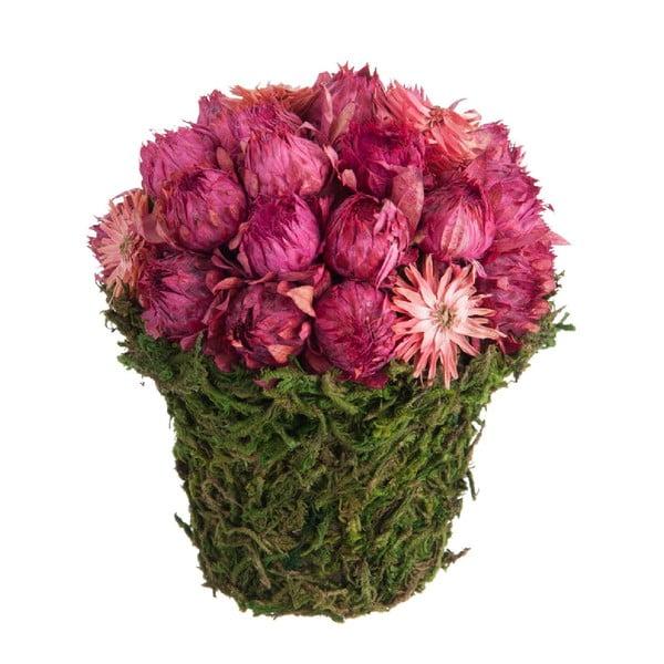 Slamienky v kvetináči z mechu Dried