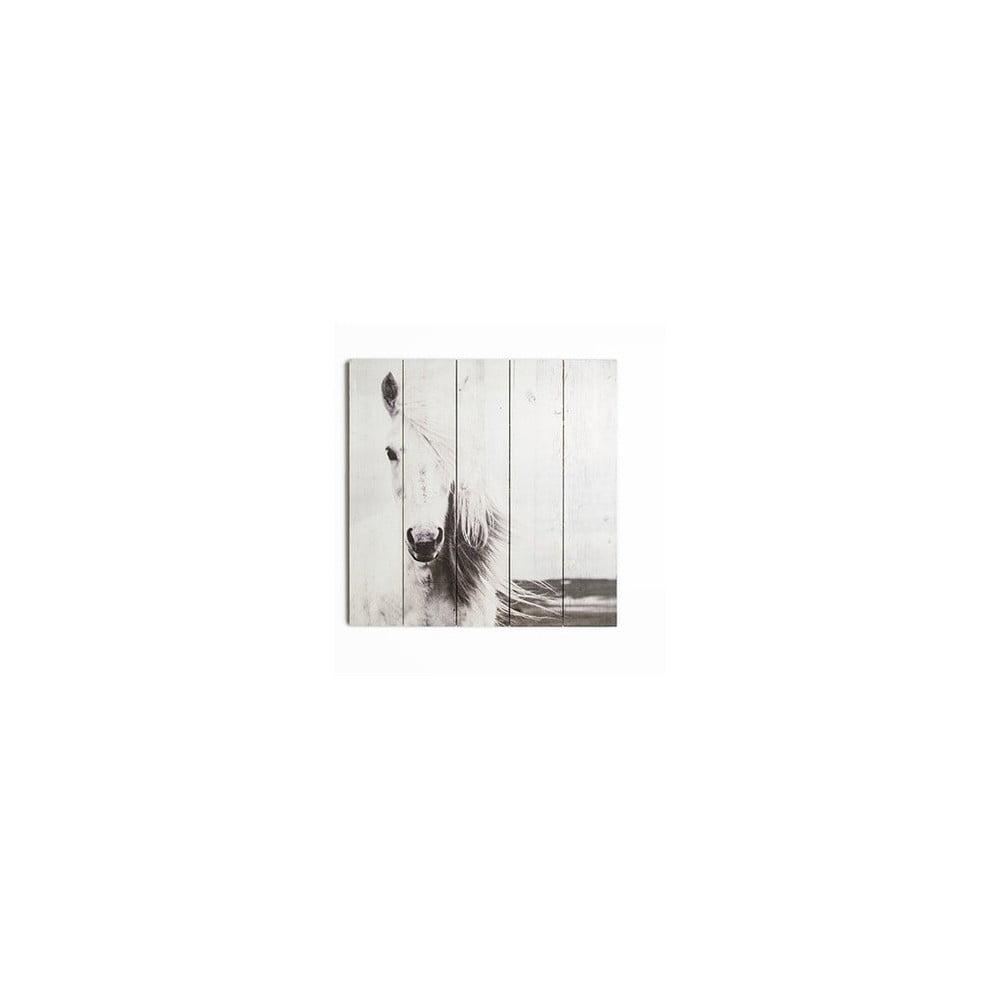 Drevený obraz Graham & Brown Horse, 50 × 50 cm