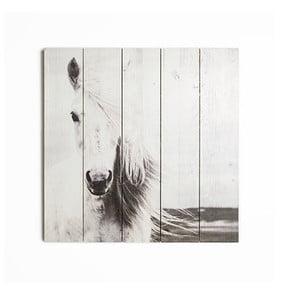 Drevený obraz Graham&Brown Horse,50x50cm