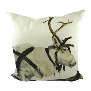 Vankúš Sepia Reindeer Working 50x50 cm