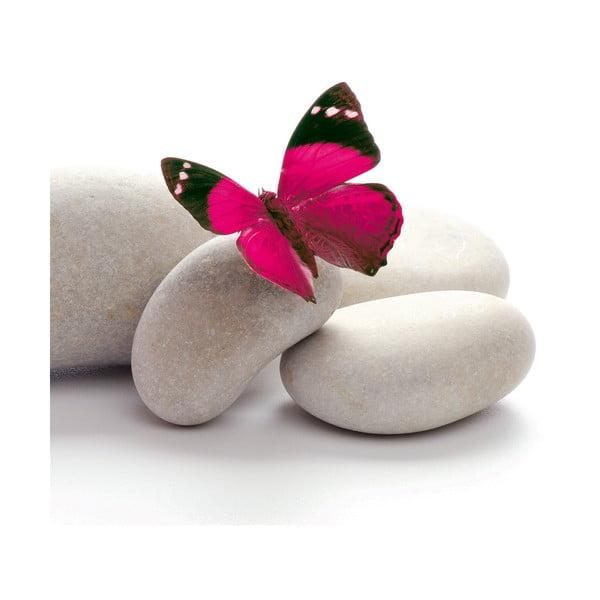 Sklenený obraz Papillon, 20x20 cm