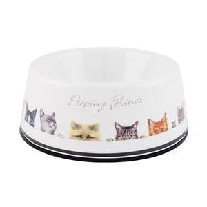 Miska pre mačky Ashdene Peeping Felines, ⌀13cm