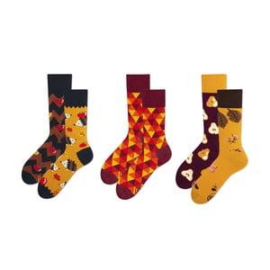 Set ponožiek v darčekovom balení Many Mornings Autumn, veľ. 43–46