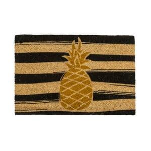 Rohožka Entryways Golden Pineapple, 40×60 cm