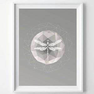 Plagát Dragonfly, A3