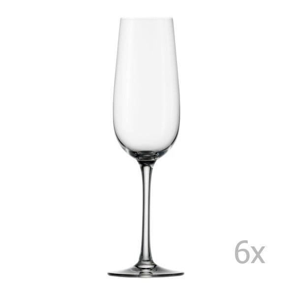 Set 6 pohárov Weinland Flute Champagne, 200ml