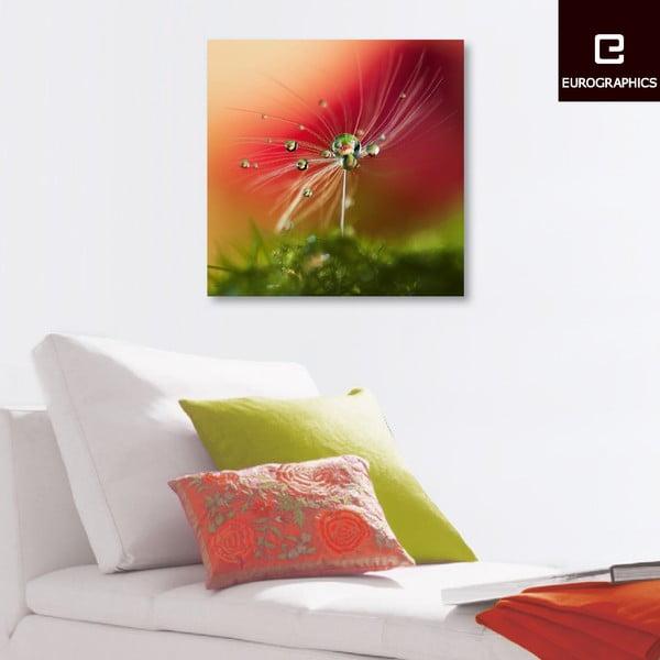 Skleněný obraz Red Morning, 50x50 cm
