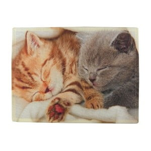 Prestieranie Mars&More Kittens Sleeping on Blanket, 40 x 30 cm