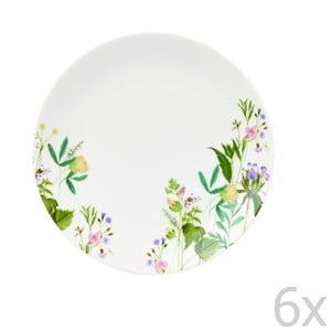Sada 6 tanierov Churchill China Himalyan Flowers, 20 cm
