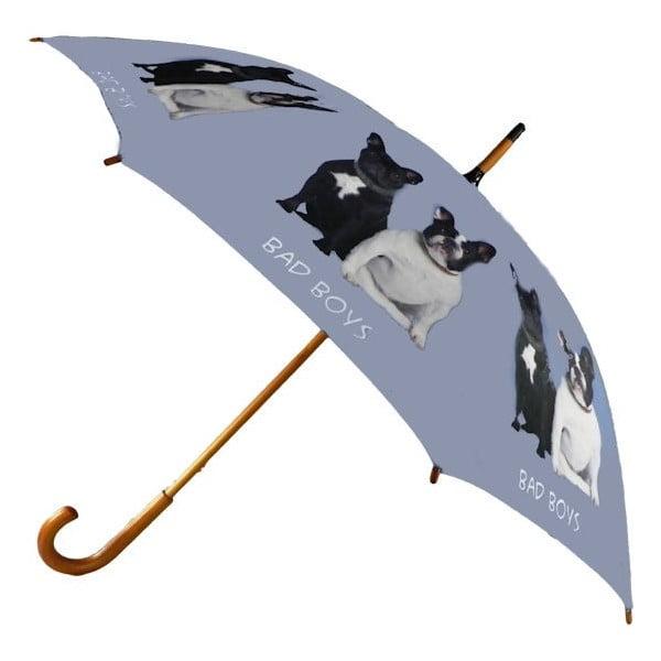 Dáždnik French Bulldog