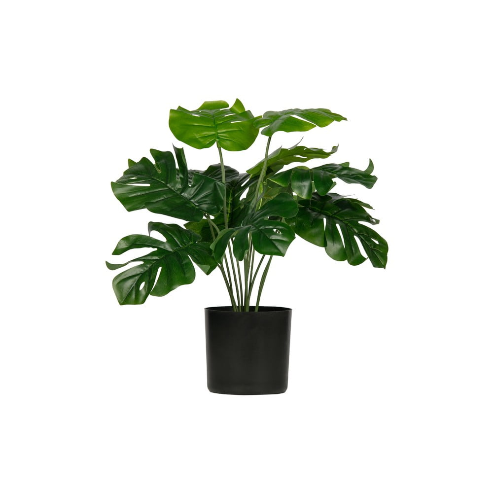 Umelá monstera WOOOD výška 40 cm
