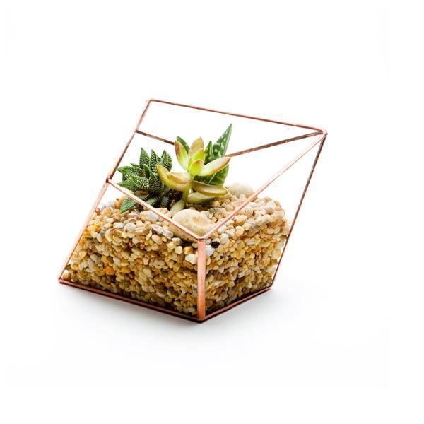 Terárium s rastlinami Diamond Terrarium, svetlý rám