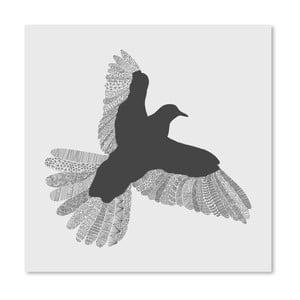 Plagát Bird Grey od Florenta Bodart, 30x30 cm