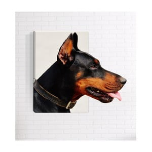 Nástenný 3D obraz Mosticx Doberman, 40 x 60 cm
