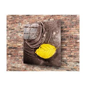Sklenený obraz Insigne Cantalo, 40 × 40 cm