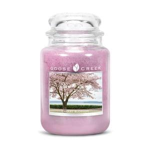 Vonná sviečka v sklenenej dóze Goose Creek Čerešňový kvet, 150 hodín horenia