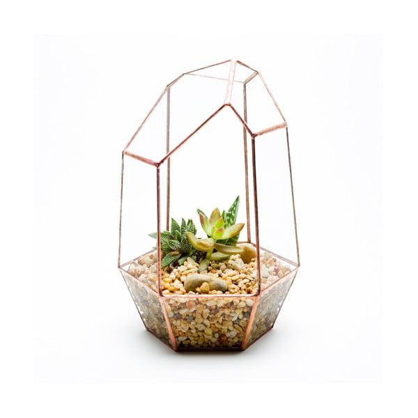 Terárium s rastlinami Gem Terrarium, svetlý rám