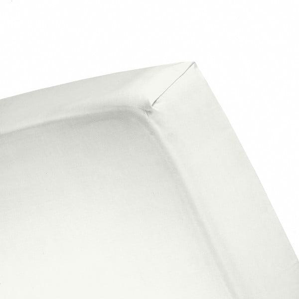 Plachta Cinderella Ivory, 80x200 cm